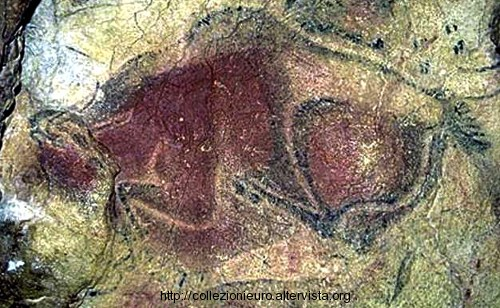 Bisonte grotta altamira 2014